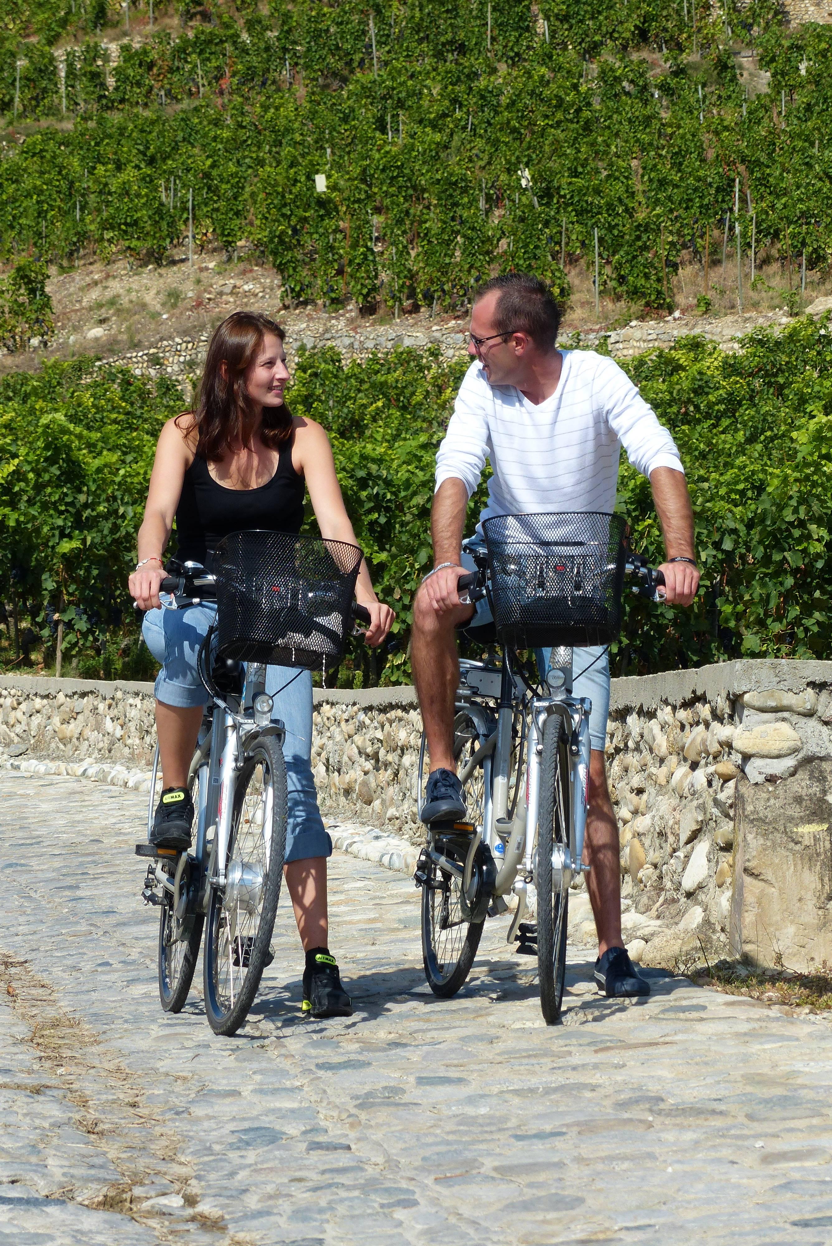 Vélo dans les vignobles de Saint Joseph