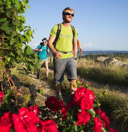 8 randonnées autour de Tain l'Hermitage et Tournon sur Rhône