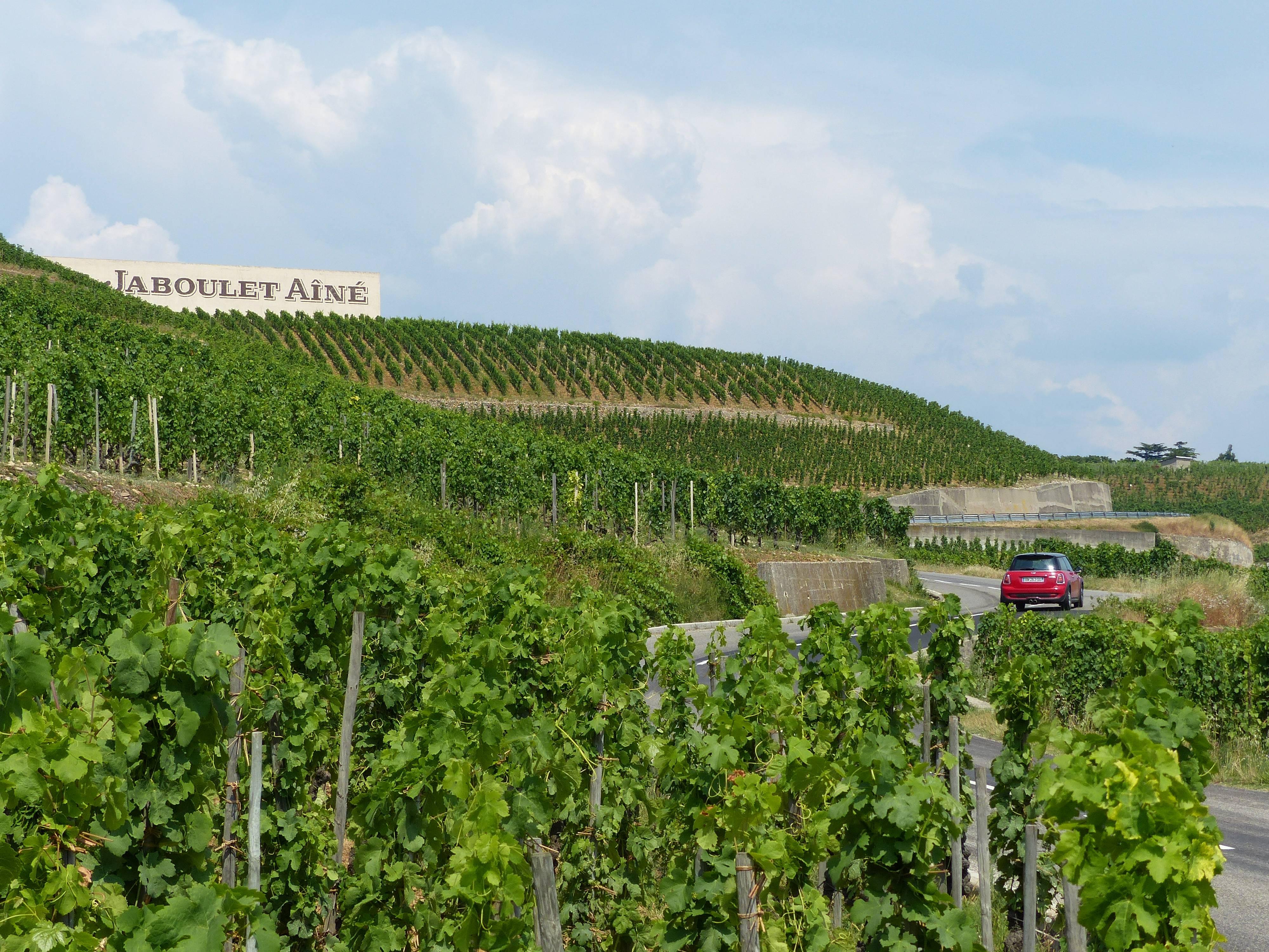 Route des vins Côtes du Rhône