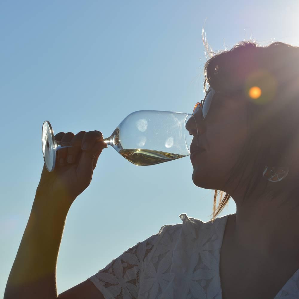 Dégustation de vin hermitage
