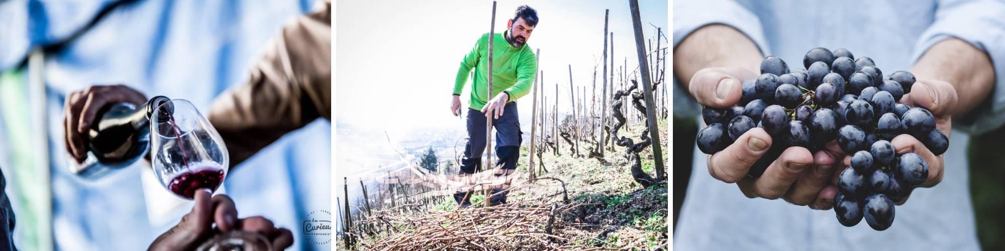 vin naturel en Ardèche Hermitage