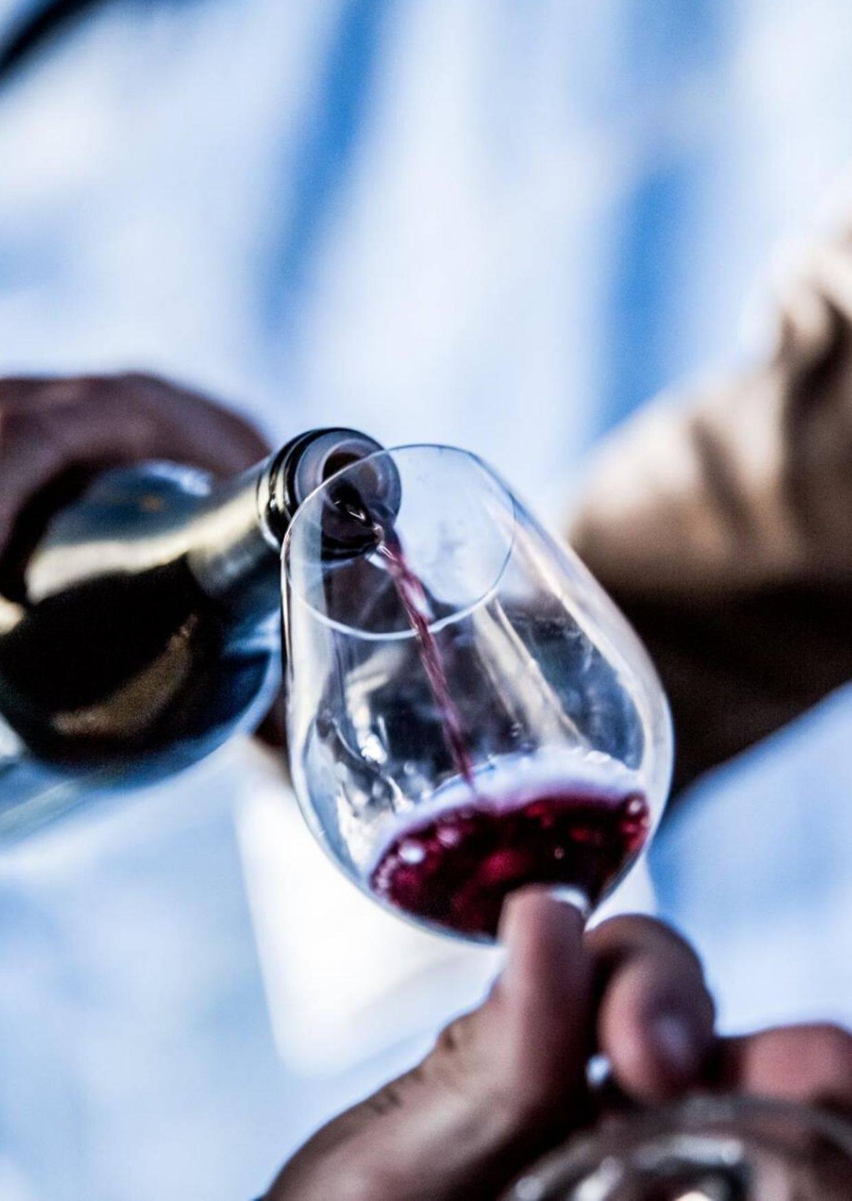 producteurs de vin Bio en Ardèche Hermitage