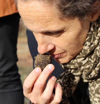 "The black truffle of the ""Drôme des collines"""
