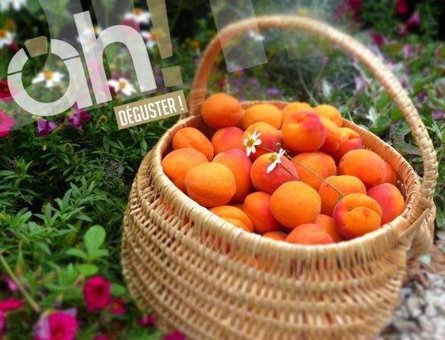 Acheter des fruits en Vallée du Rhone