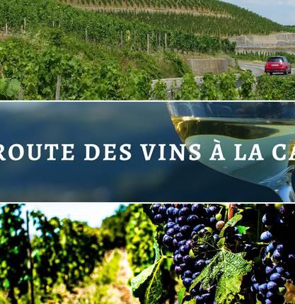 Ma route des vins en Vallée du Rhône : D'Hermitage en Saint Joseph