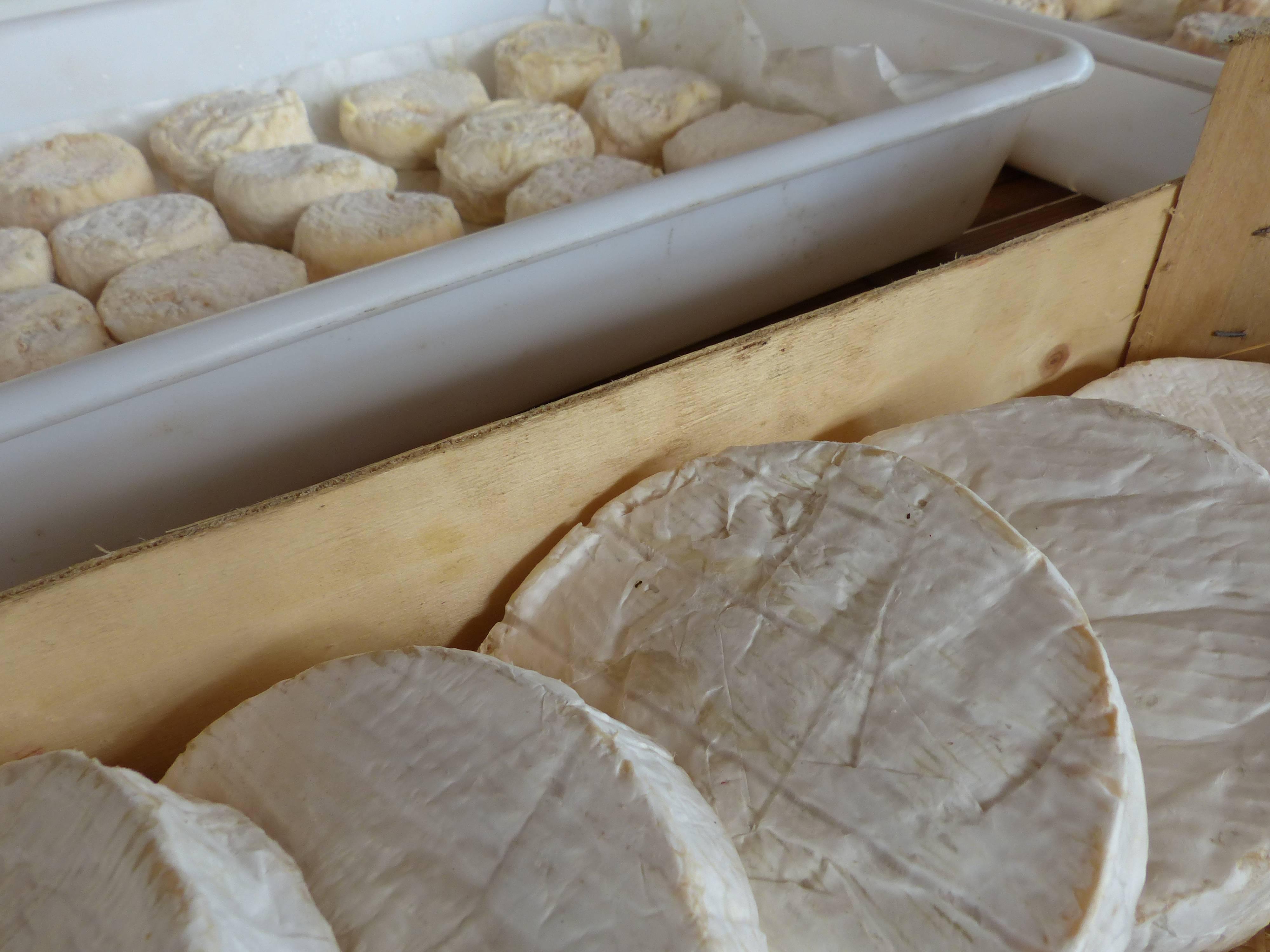 Fromage de Vache Ardèche