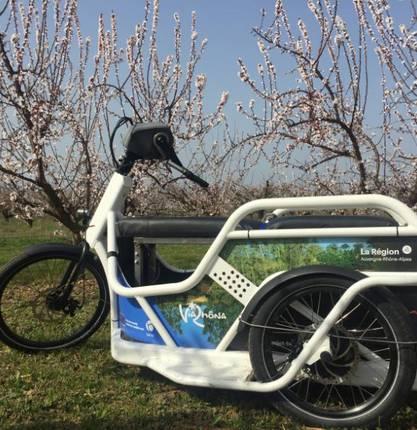 Damien a testé pour vous le vélo Benur