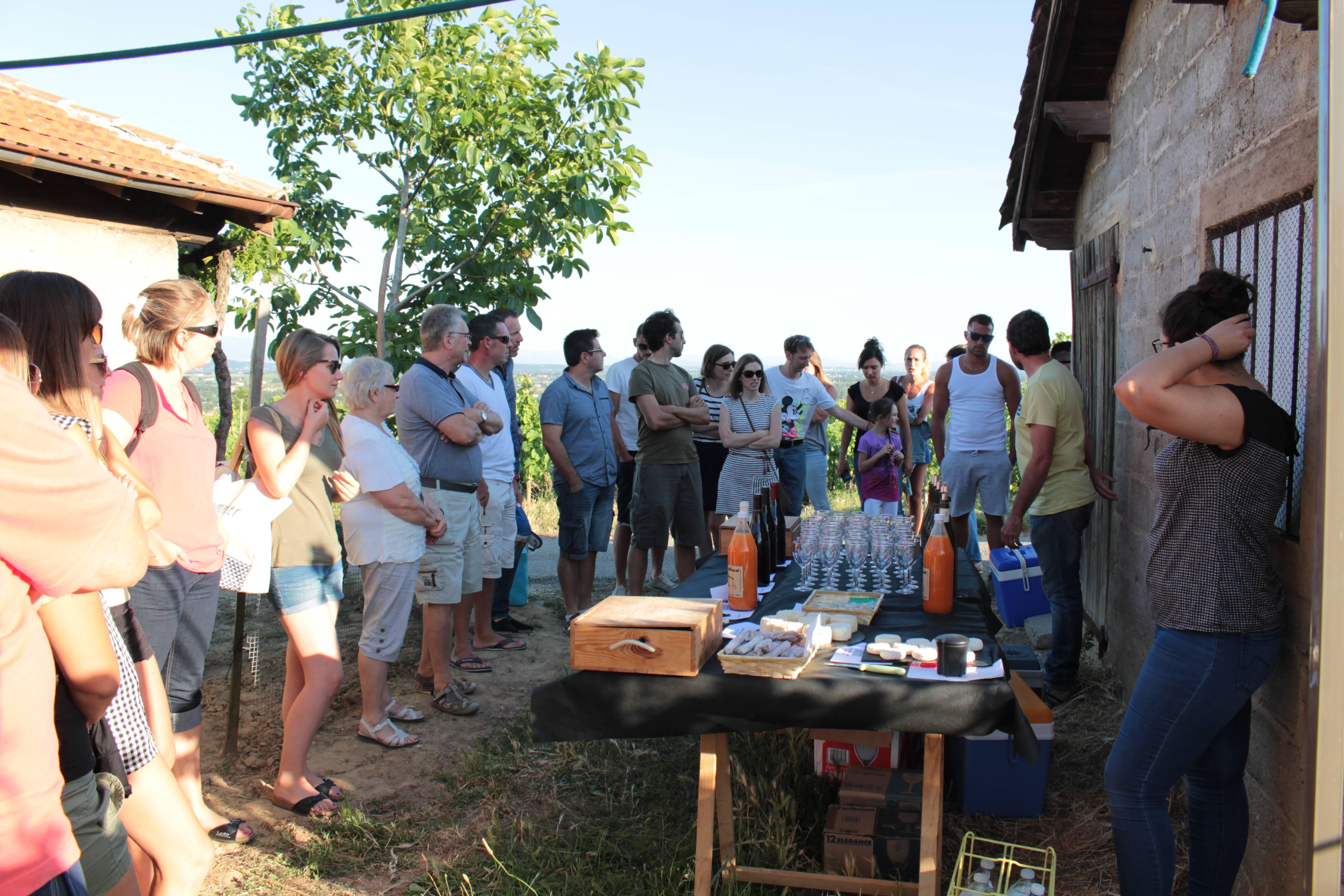 rencontre avec un sommelier au cœur des vignes de l'Hermitage