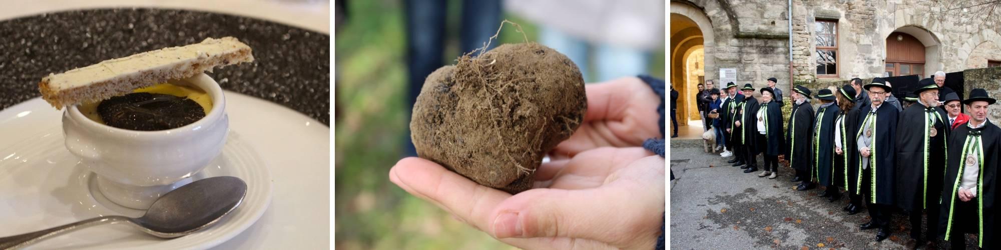 la truffe noire de la Drôme des collines