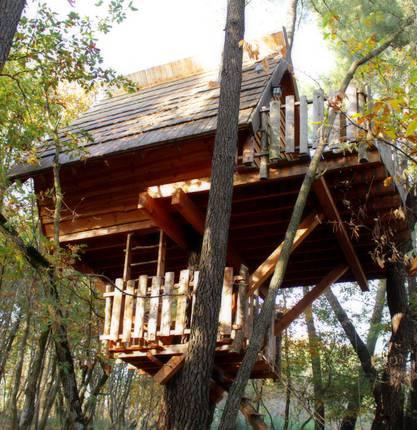 Sidonie slept in a treehouse in the Drôme region