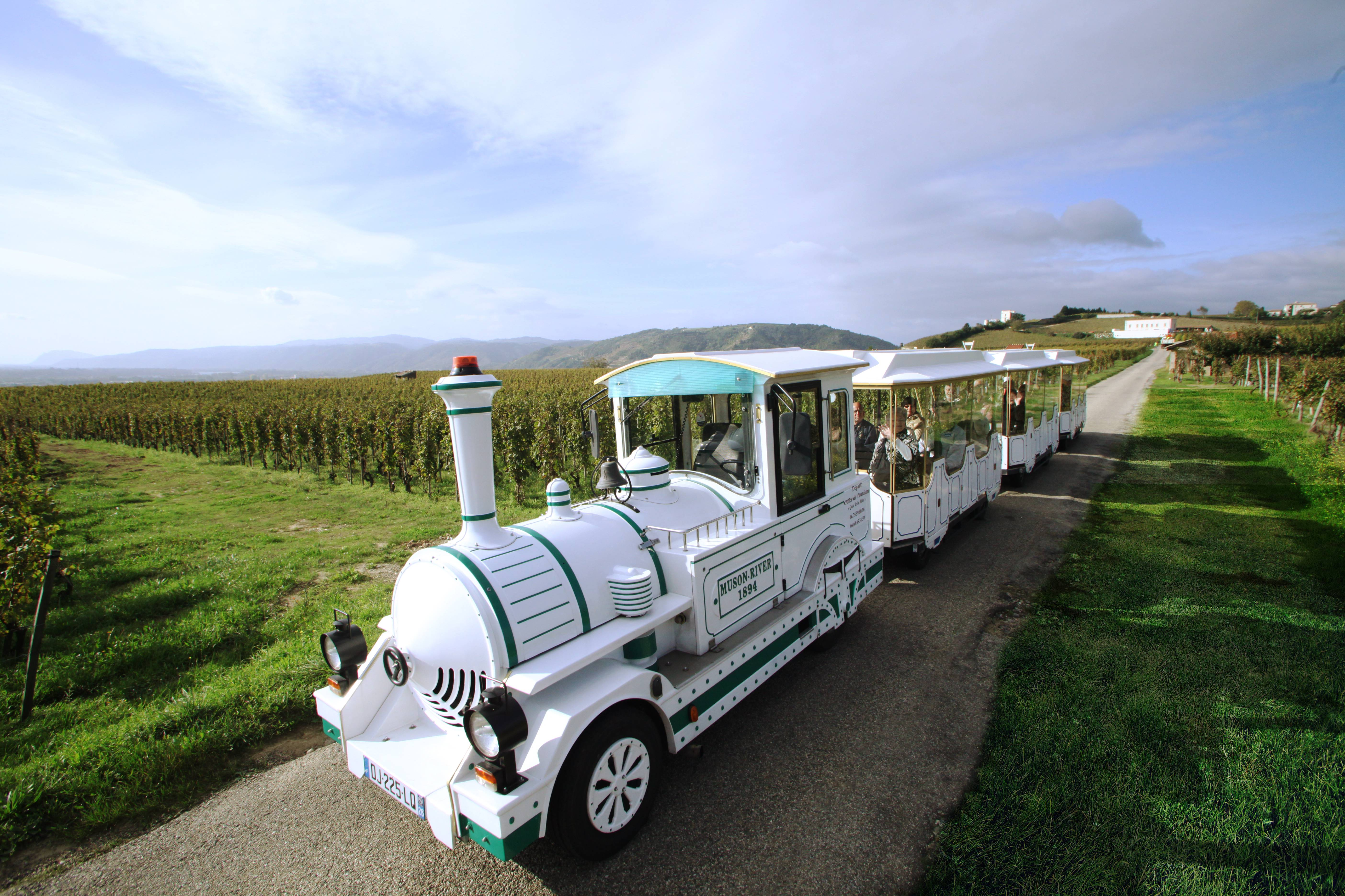 Petit Train des vignes