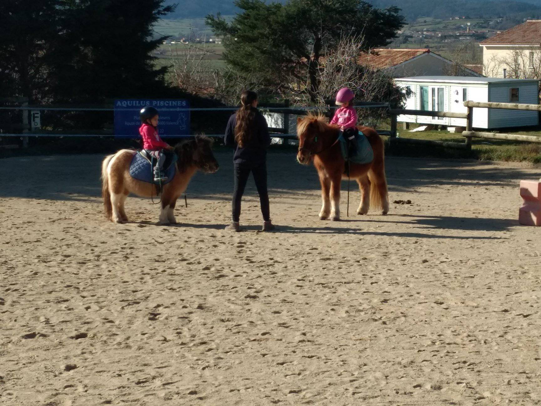 Stage Poney aux Ecuries de Vaillant