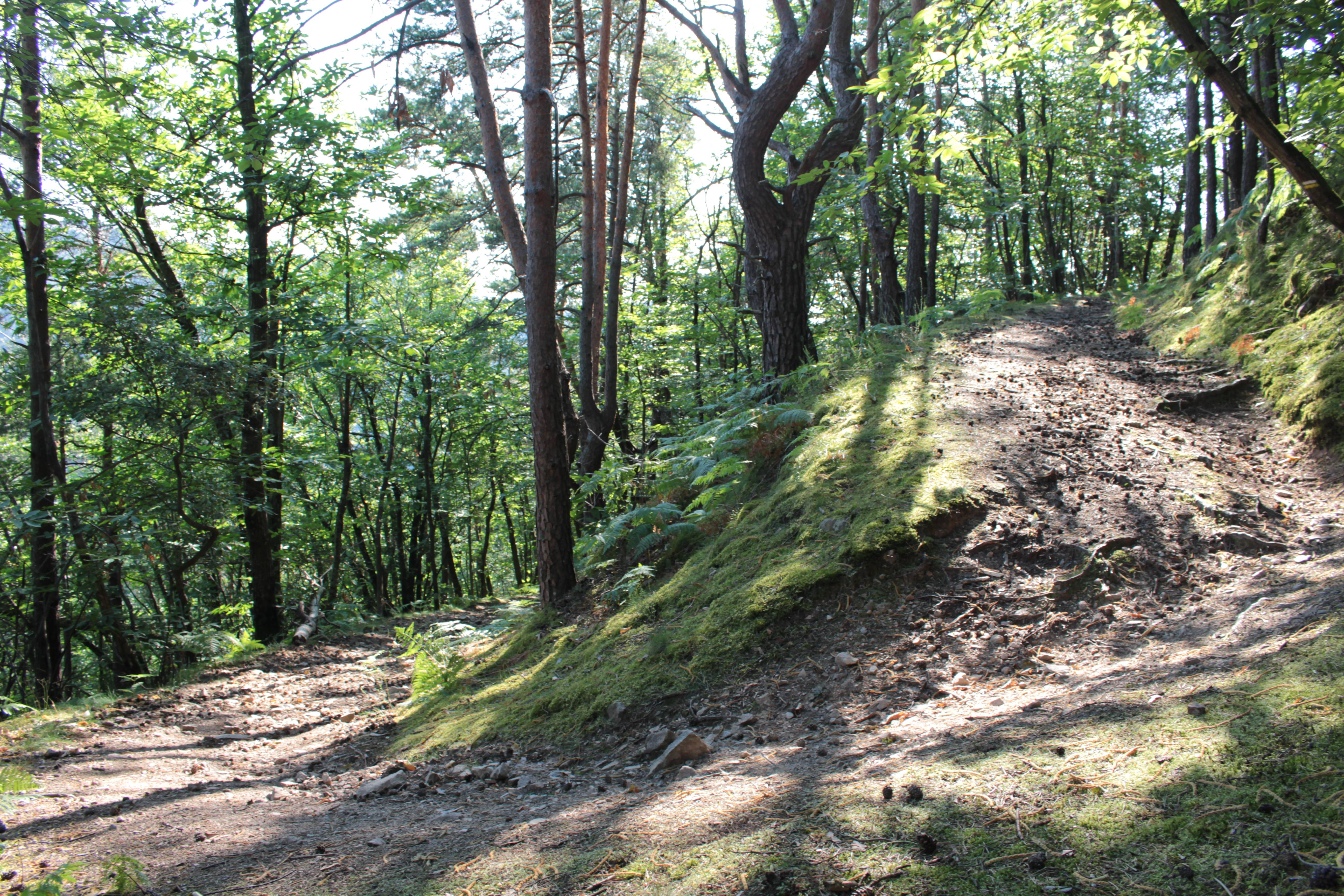 Sentier de randonnée Gorges de la Daronne