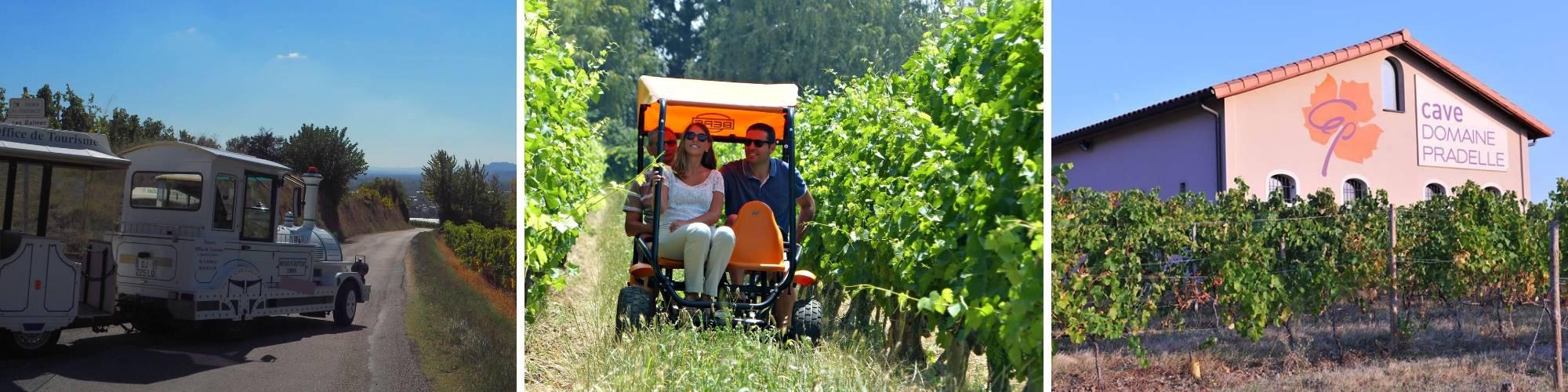 balade ludique dans les vignobles.