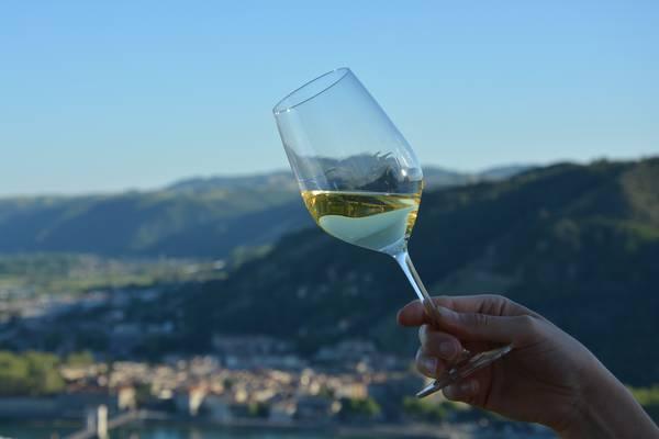 Vin blanc avec vu sur la vallée du Rhône