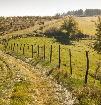 5 randonnées autour de Saint Donat sur l'Herbasse
