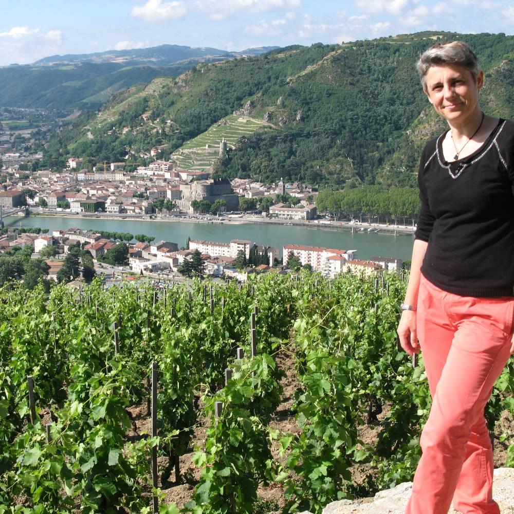 Terres de Syrah vignobles vallée du Rhône