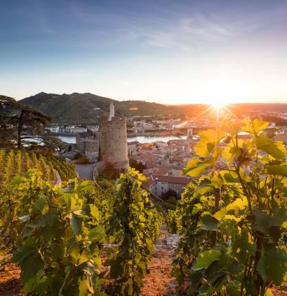 Top 5 ideas for visits in Tournon sur Rhône