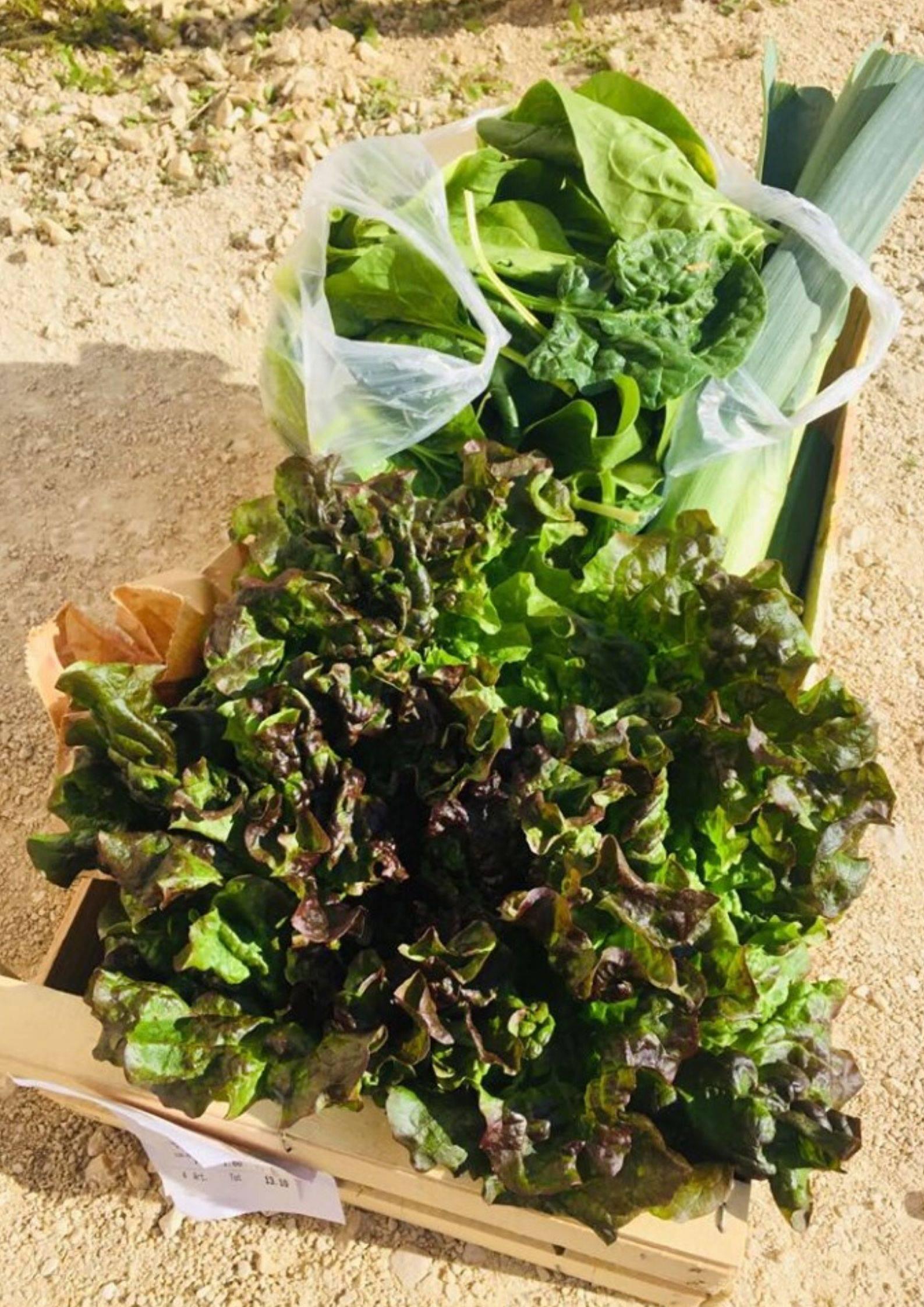 Paniers de légumes des ïles ferays