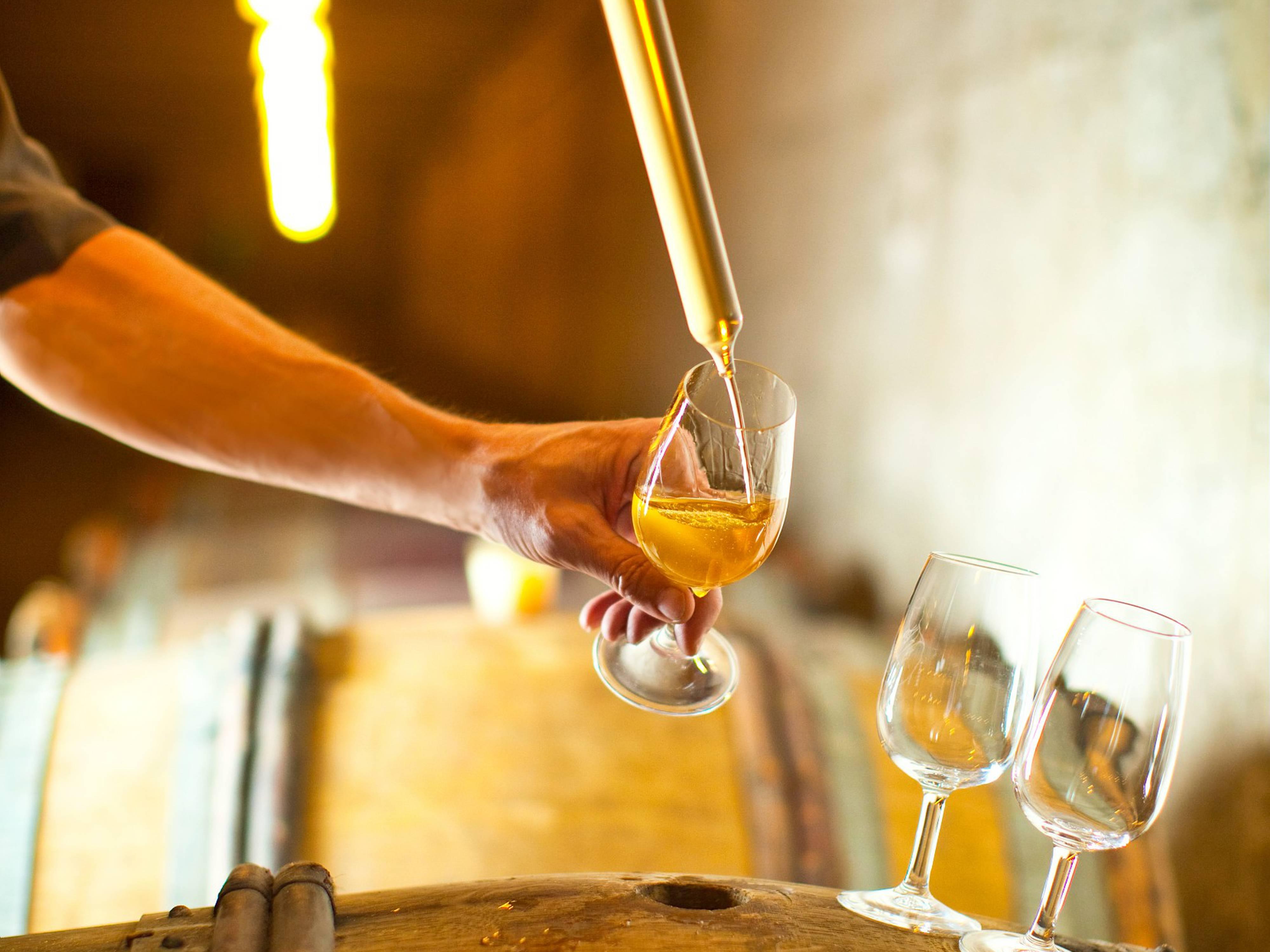 Meet the winemakers of the Rhône Valley