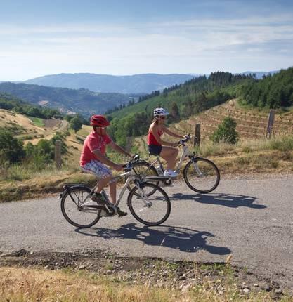 MTB & Bike rental