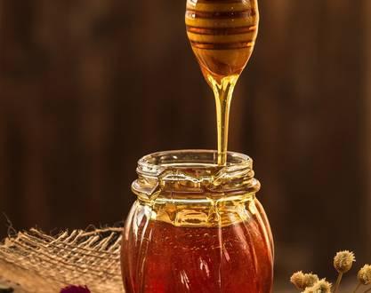 Les ruchers de genêts
