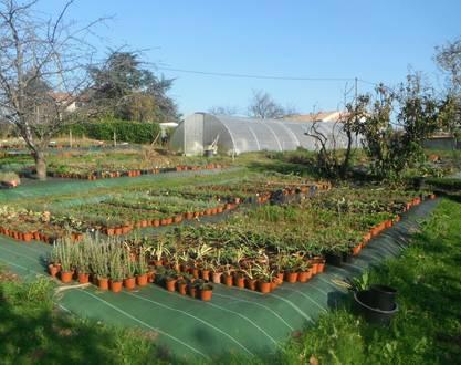 The gardens of Sardailhac