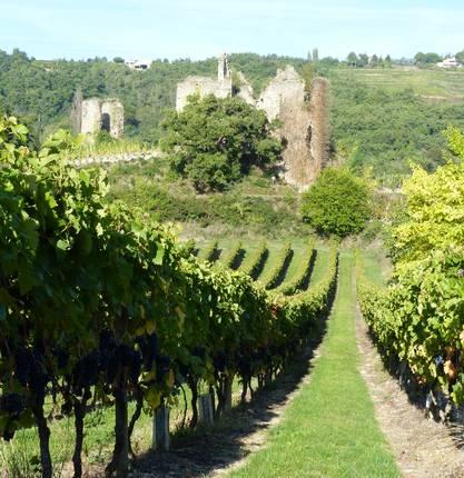 Castle of Larnage