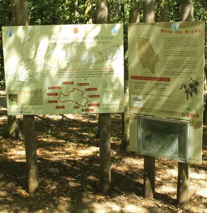 Randocroquis - Le bois de Sizay