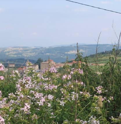 Village de Bozas