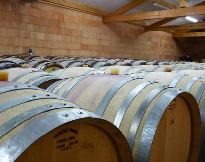 Winery Saint Clair - Denis Basset