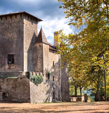 Castle of Charmes