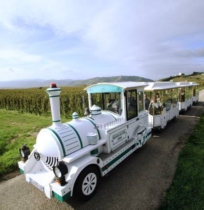 Road train in the Hermitage vineyards