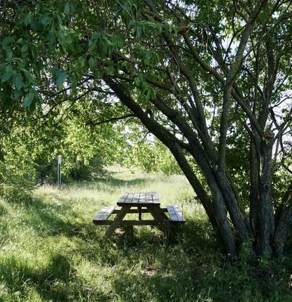 Das Gebiet der Biodiversität am Domaine Michelas Saint Jemms